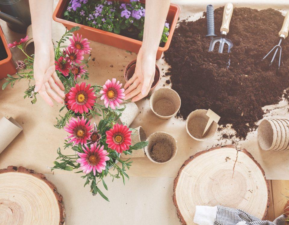 paysagiste pour l'entretien de jardin