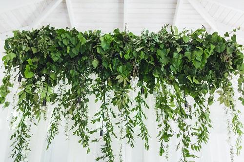 Mur végétal synthétique